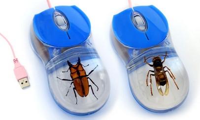 souris d'ordinateur avec insecte